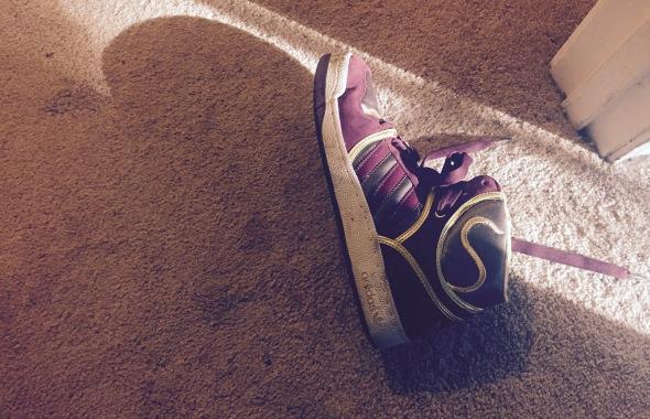 stray_shoe